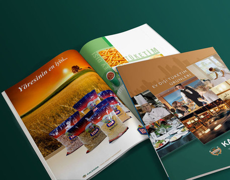 Brochure Design by sgcanturk - 13926