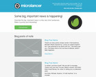 Flexible, Clean Newsletter Design For Your Business by pixelnourish - 11951