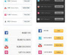 Custom WordPress Social Network Integration Plugin Development by jdpowered - 22709