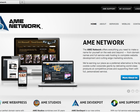 Wordpress Premium Theme Install & Customization by AME-Network - 24991