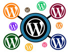 WordPress Multisite Installation by Merobox - 28071