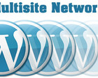 WordPress Multisite Installation by Merobox - 28072