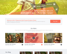 Website to WordPress Responsive Theme by asheron - 34493