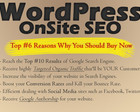 Professional WordPress OnSite SEO by ScorpionGod - 30864