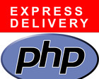 Fix Small WordPress or PHP Issues by nyasro - 31733