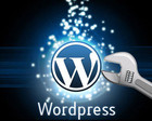 Fix, Modify or Customize WordPress issues by jimmylinda - 39295