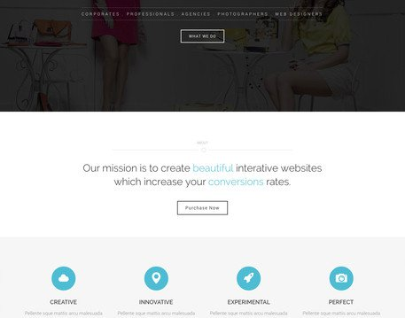 WordPress Theme Customization by VibeThemes - 42887