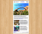 E-mail Newsletter Design by tedfull - 5523