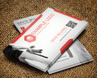 Corporate Business Card Design Service by pmvchamara - 5731