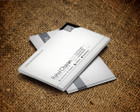 Professional Business Card by Sremac - 64287