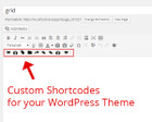 Custom Plugins, Shortcodes, Widgets, Theme Option for WordPress by 1theme - 46672