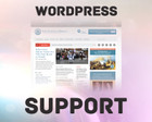 WordPress Assistance for Common Difficulties by freelancerrs - 44246