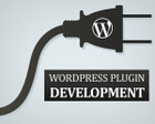 Custom WordPress Plugin Development by alisaleem252 - 41550