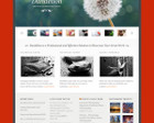 ThemeForest WordPress Theme Installation with Demo by sirmedia - 42475