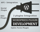 Custom WordPress Plugin Development by alisaleem252 - 41552