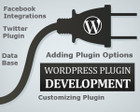 Custom WordPress Plugin Development by alisaleem252 - 41551
