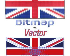 convert pdf to vector format