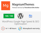 Premium WordPress Website Google Page Speed and SEO Optimization by dedalx - 73557