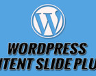Wordpress Plugin Development Or Customization by snilesh - 55655