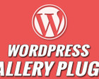 Wordpress Plugin Development Or Customization by snilesh - 55656
