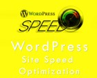Wordpress Website Page Speed Optimization by bignet - 63062