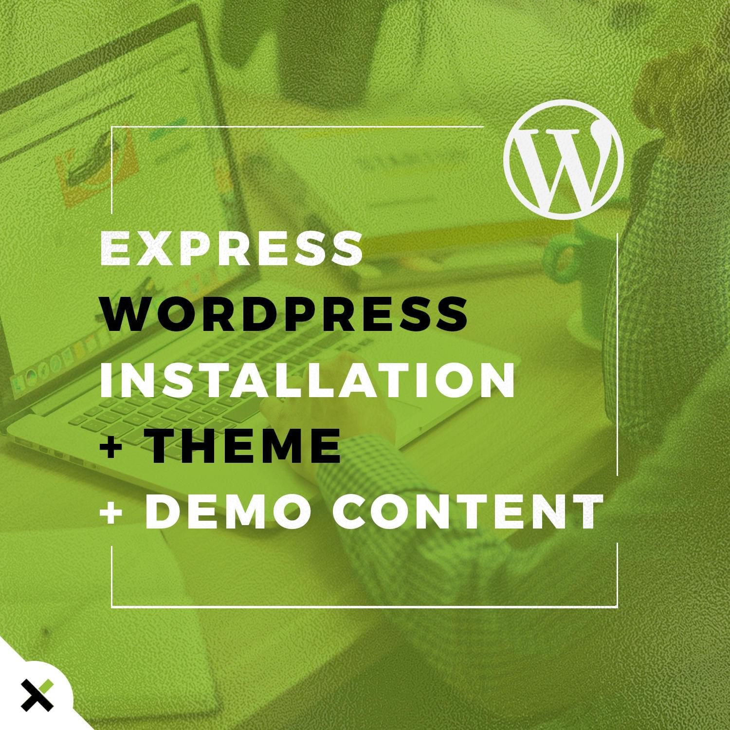 Express WordPress Installation + Theme + Demo Content by touringxx - 113963