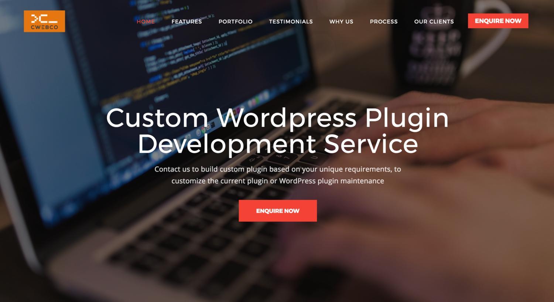 Shirt design wordpress plugin - Custom Wordpress Plugin Development Service By Cwebconsultants 107255
