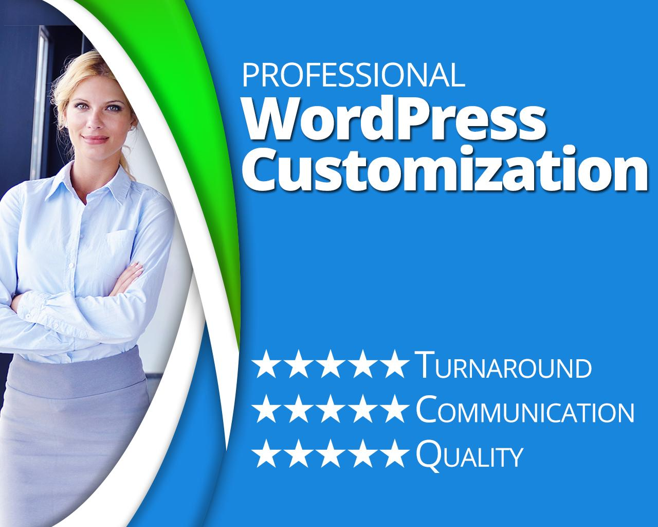 WordPress Theme/Plugin Customization Service by proseo4u on