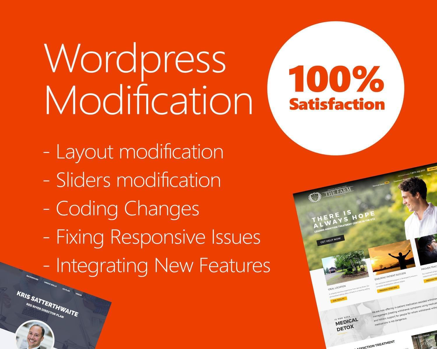 Advanced WordPress Theme Customization by hasanet - 117578
