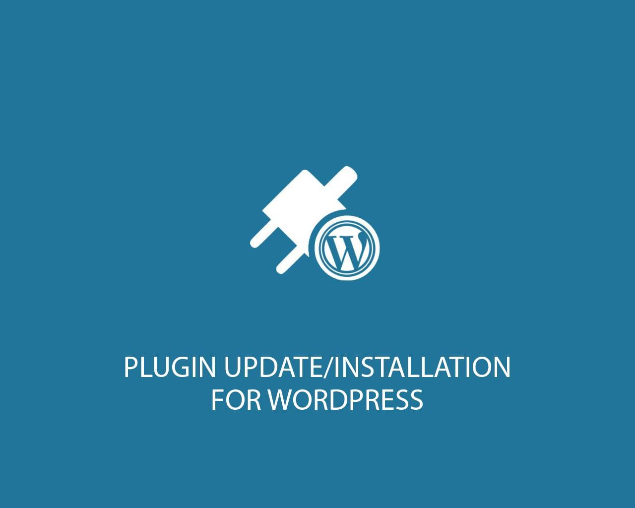 Plugin Installation, Update for WordPress by ki-themes - 117432