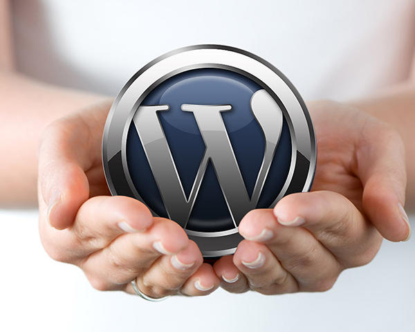 WordPress Installation Service by mrizwan - 54935