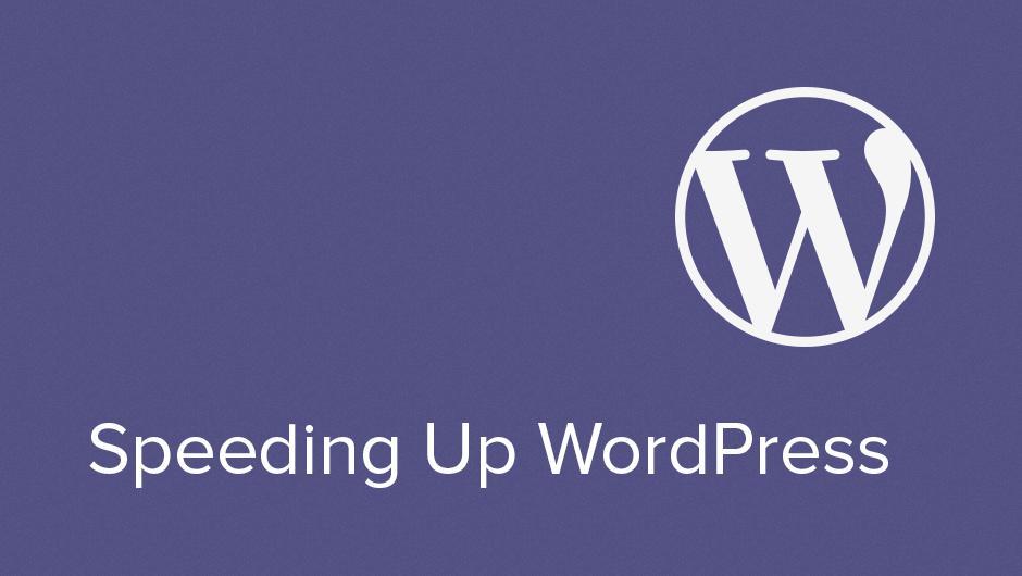 Speed-up WordPress Website by ThemePalette on Envato Studio