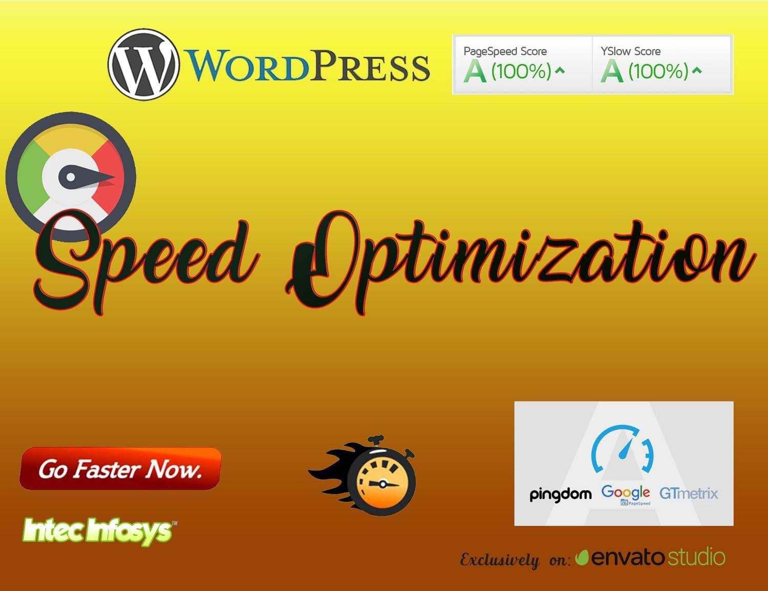 WordPress Speed up and Speed Optimization Service by intecinfosys - 114285
