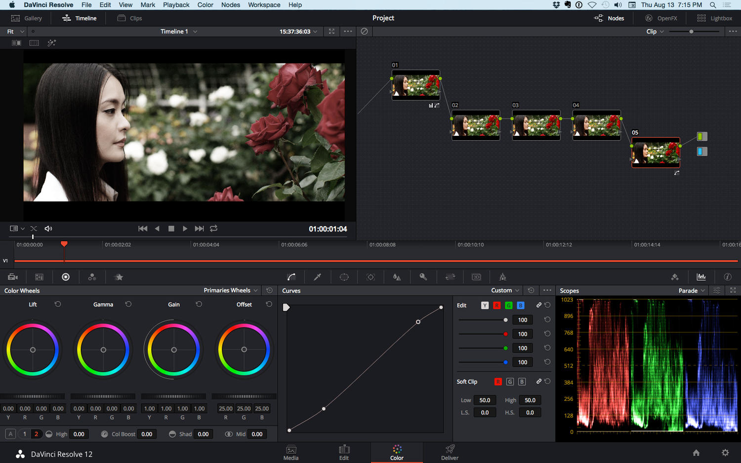 Professional Video Color Grading by GuidoDesign - 85666