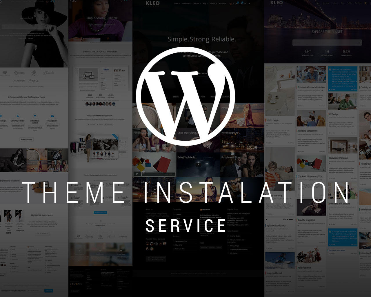 WordPress Theme Installation + Demo content + Plugins (just like theme demo) by SeventhQueen - 76910
