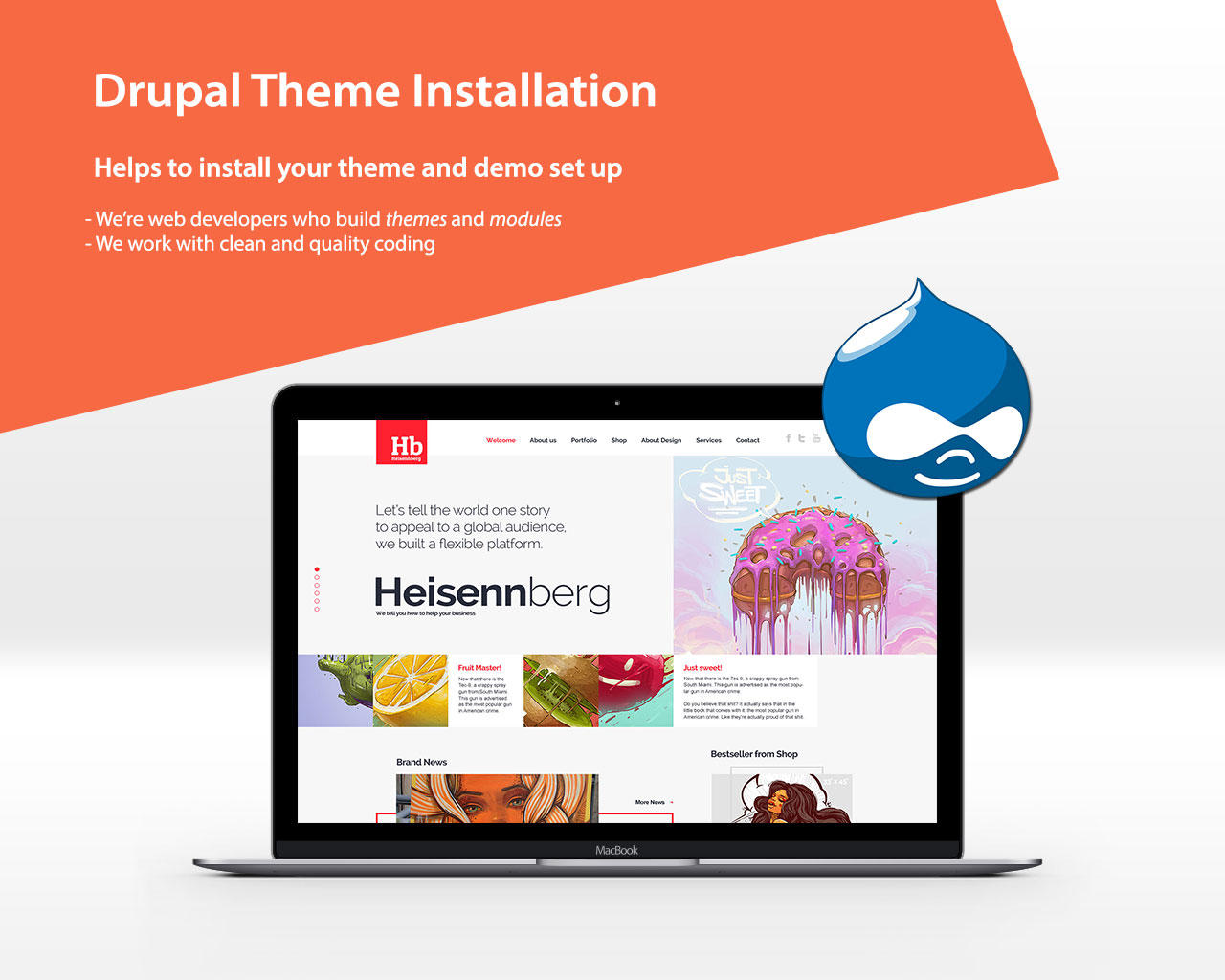 Drupal Theme installation with Demo Set up by VicTheme - 96103