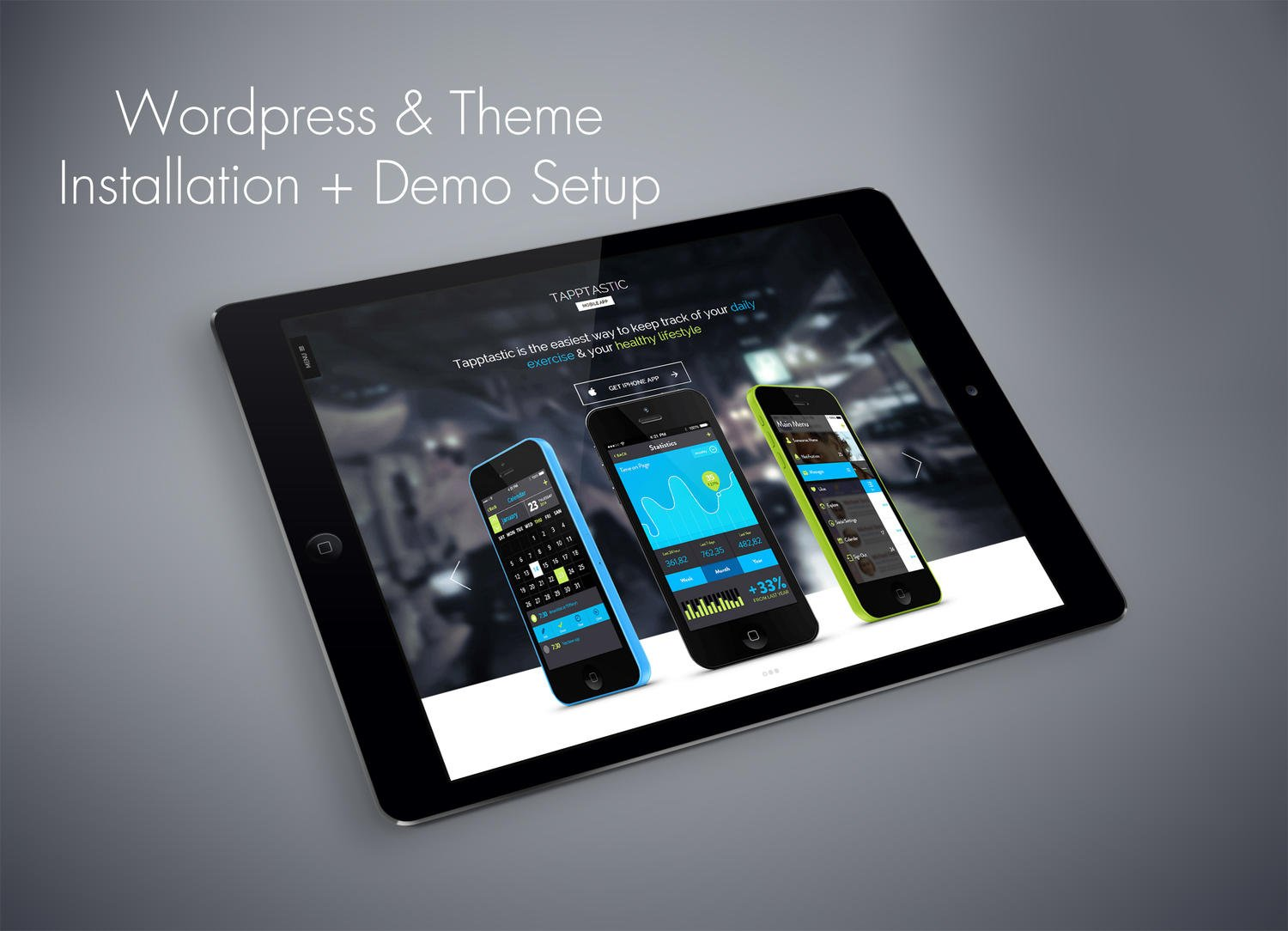 Wordpress & ThemeForest Theme Installation Plus Demo Setup by sandroo - 62649