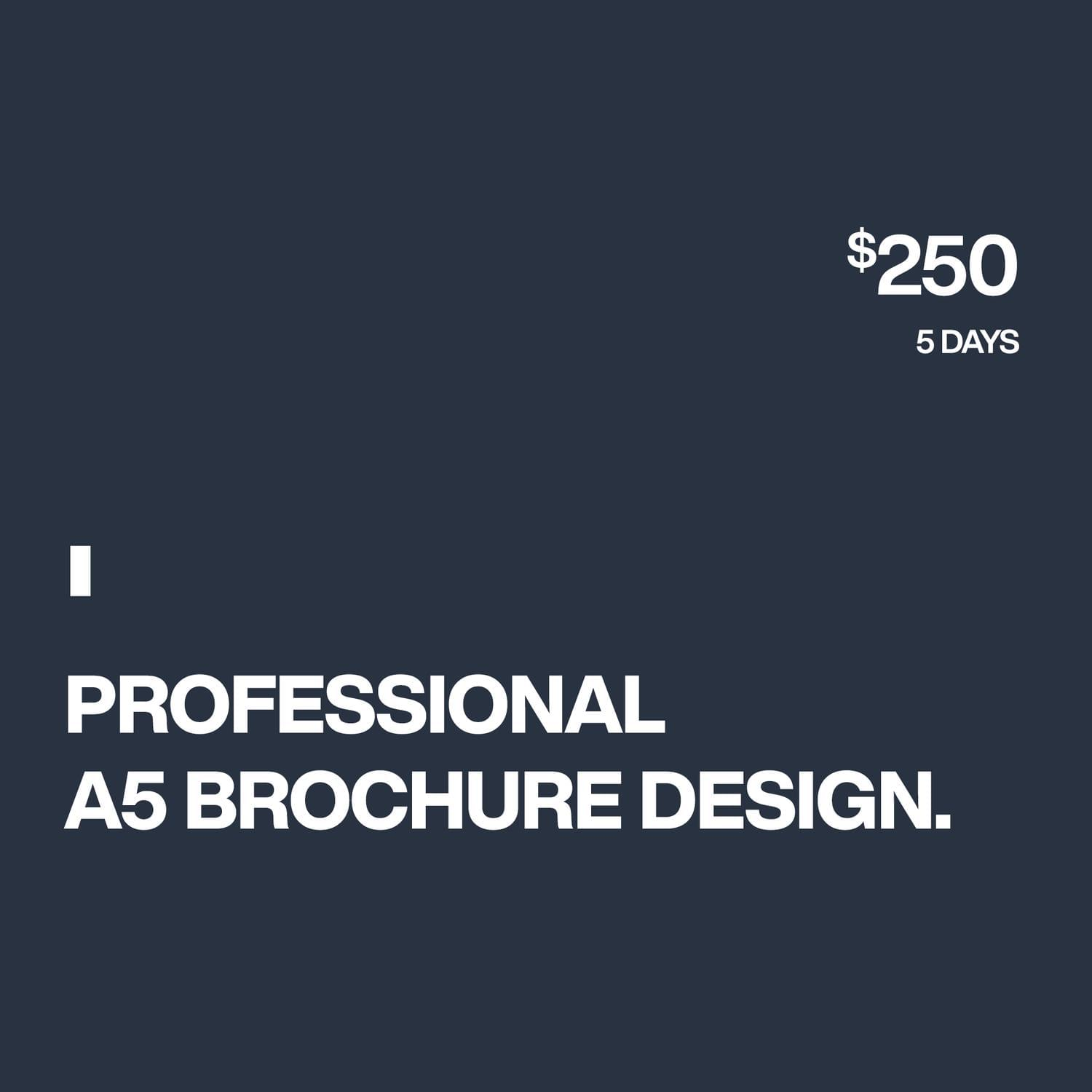 Professional A5 Brochure Design by Unicogfx - 119065
