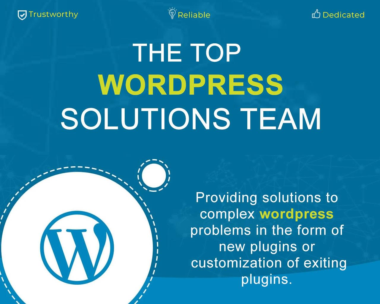 Custom Wordpress Plugin Solutions by cWebConsultants - 115876