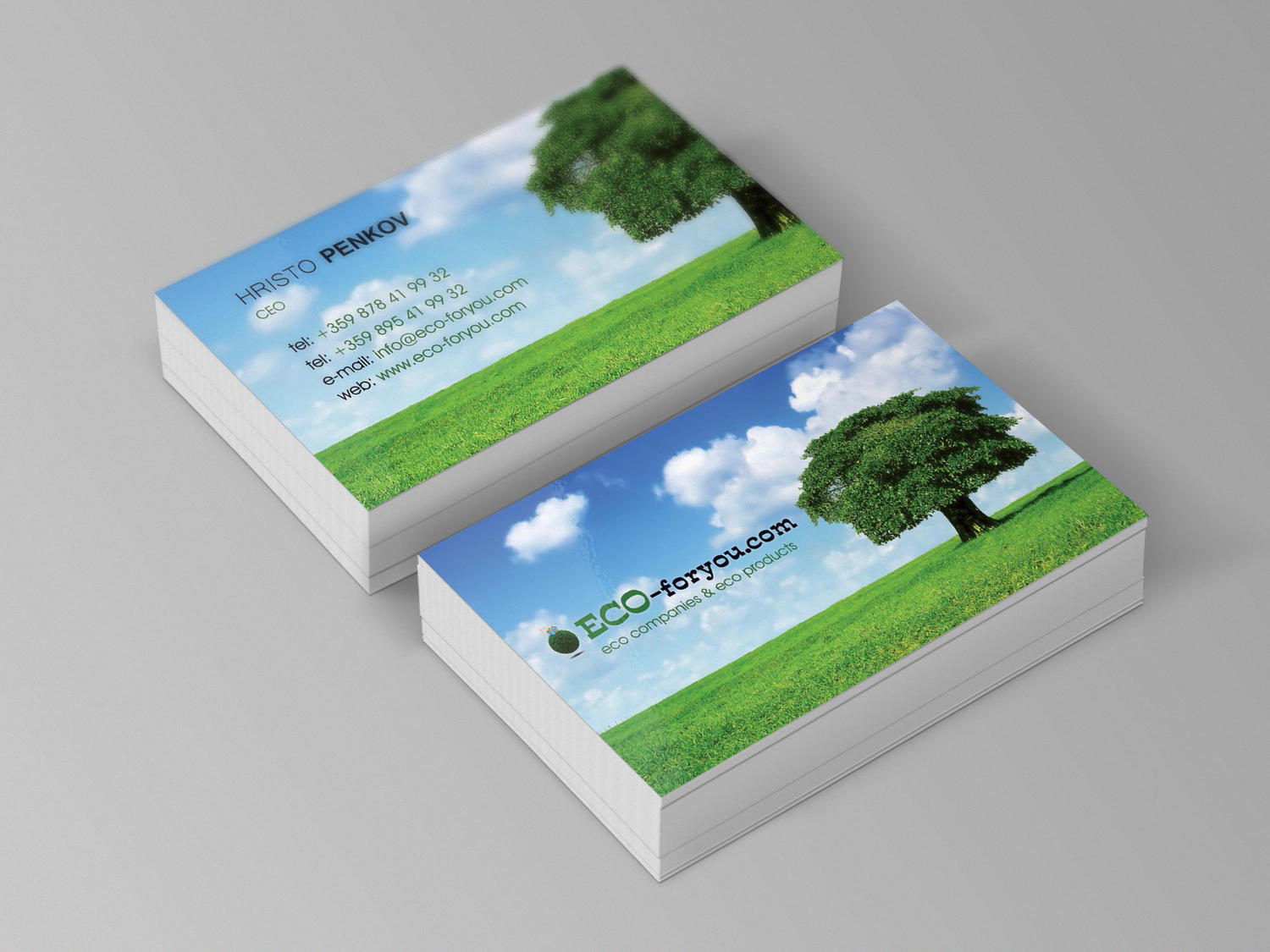 Design of Elegant Business Cards by CreaticaStudio - 30903