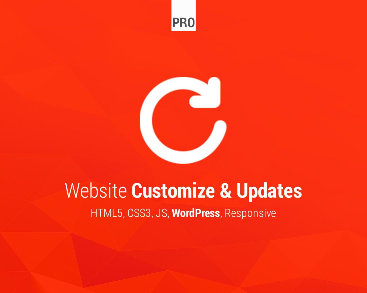 Website Customize & Updates - HTML / CSS / JS / WordPress by Lukasz_Czerwinski - 113560