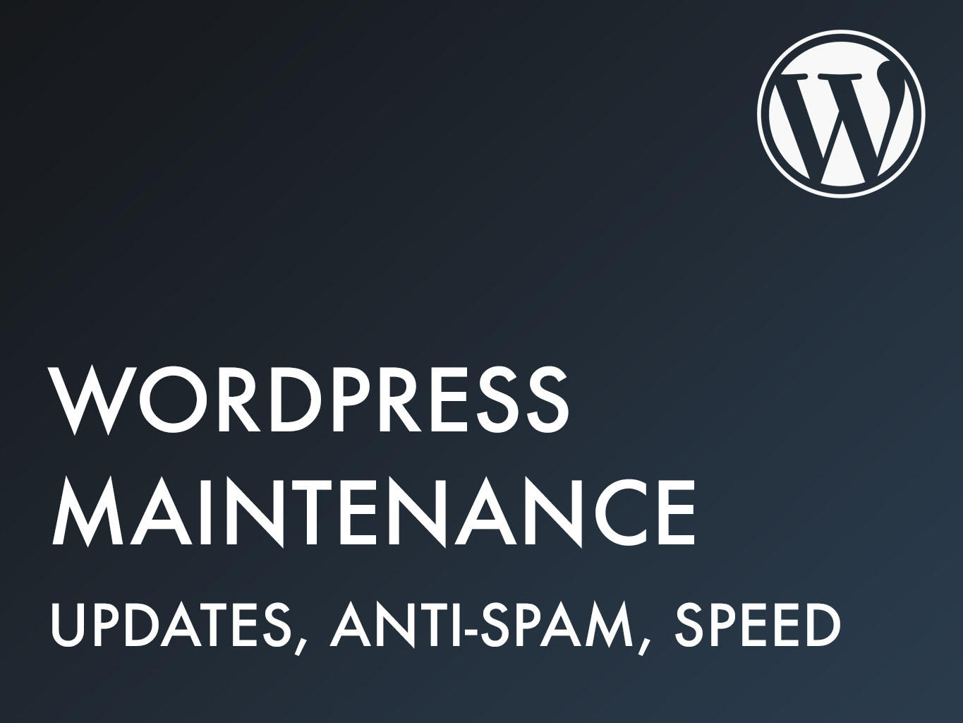 WordPress Maintenance by BioXD - 98292