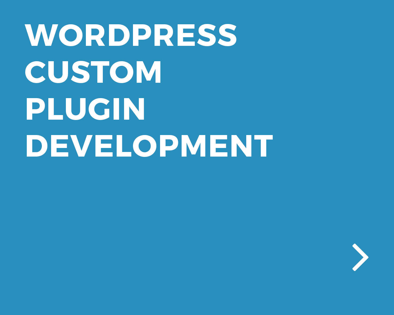 Wordpress Custom Plugin Development by bestwebsoft - 87413