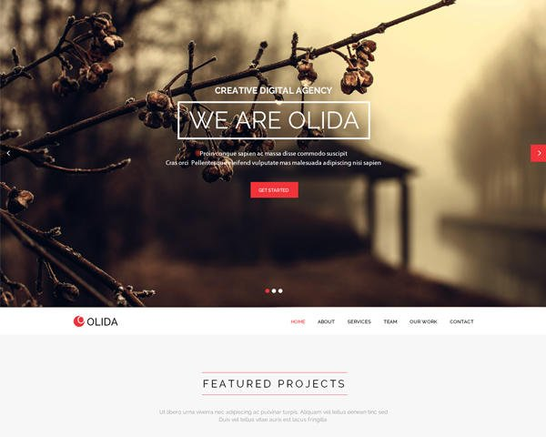 ThemeForest WordPress Theme Installation by enFusionThemes - 47252