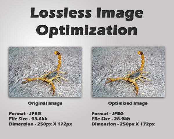 Professional Lossless Image Optimization by ScorpionGod - 36519