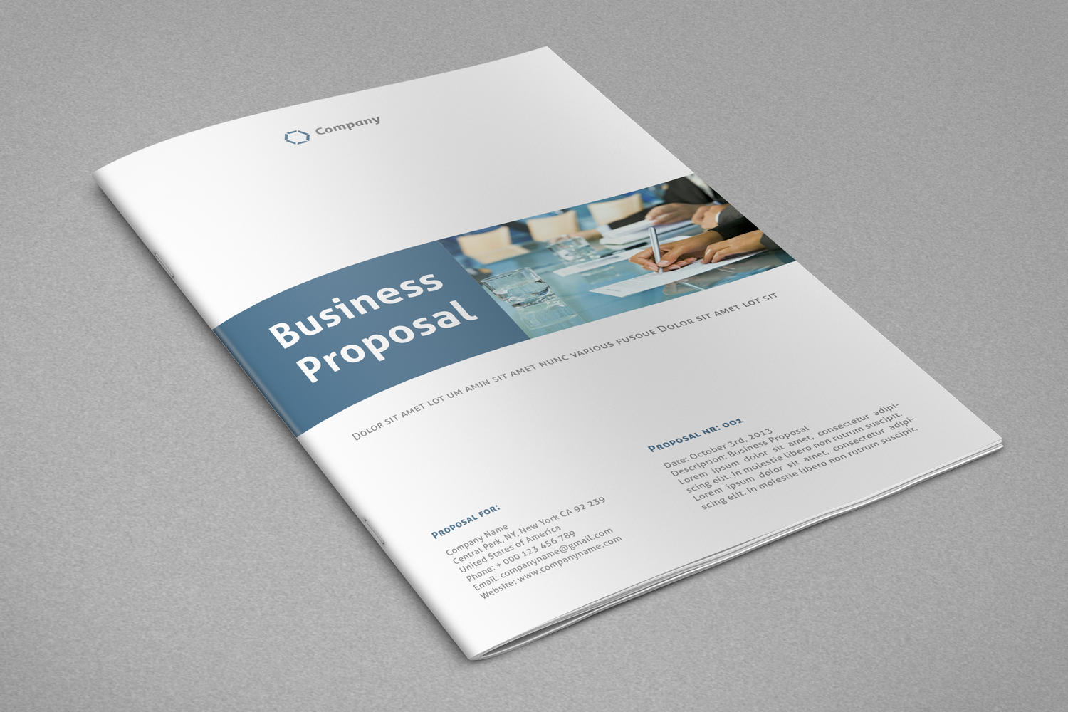 professional annual report financial report business proposal or