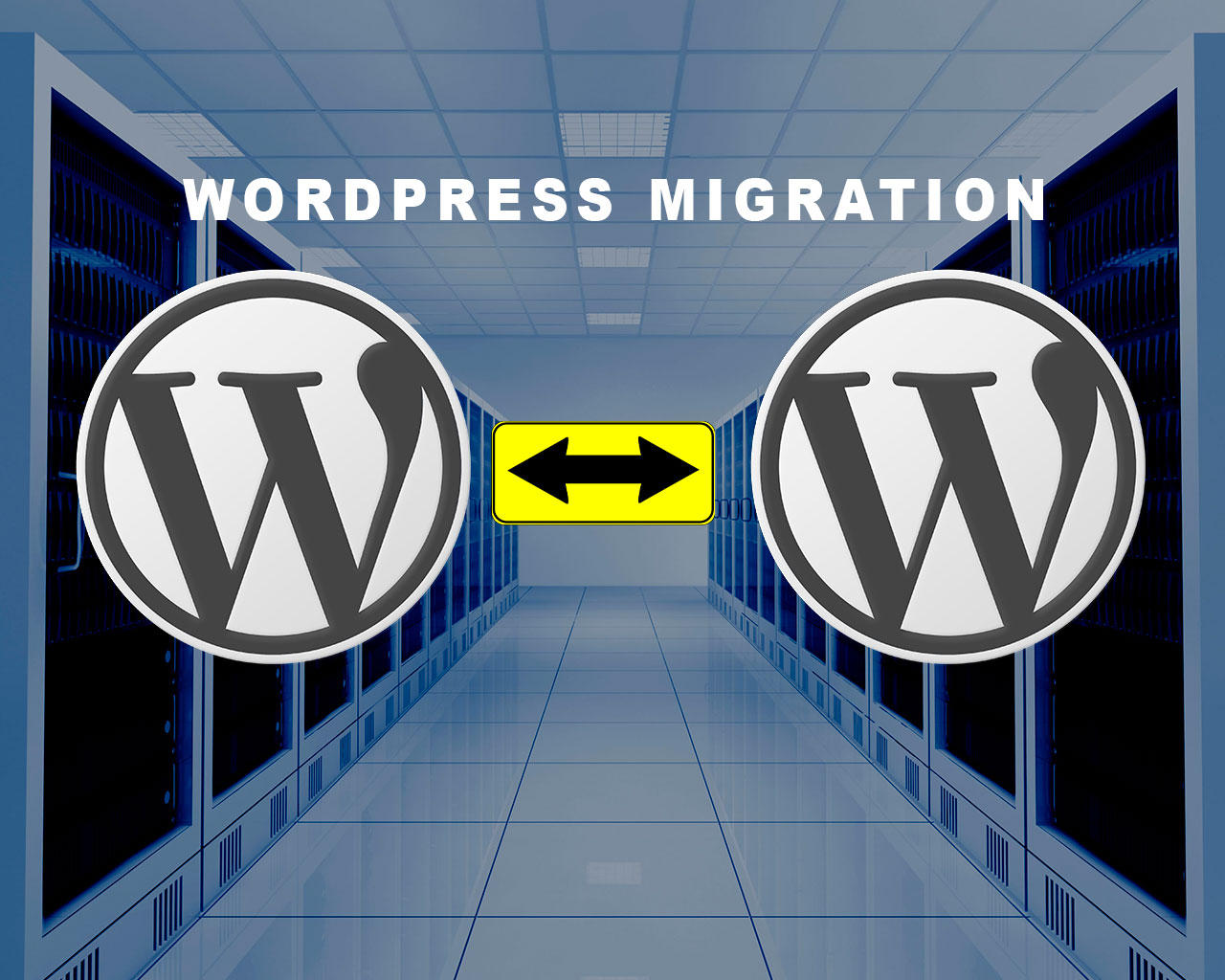 WordPress Migration Service by allspy - 71199