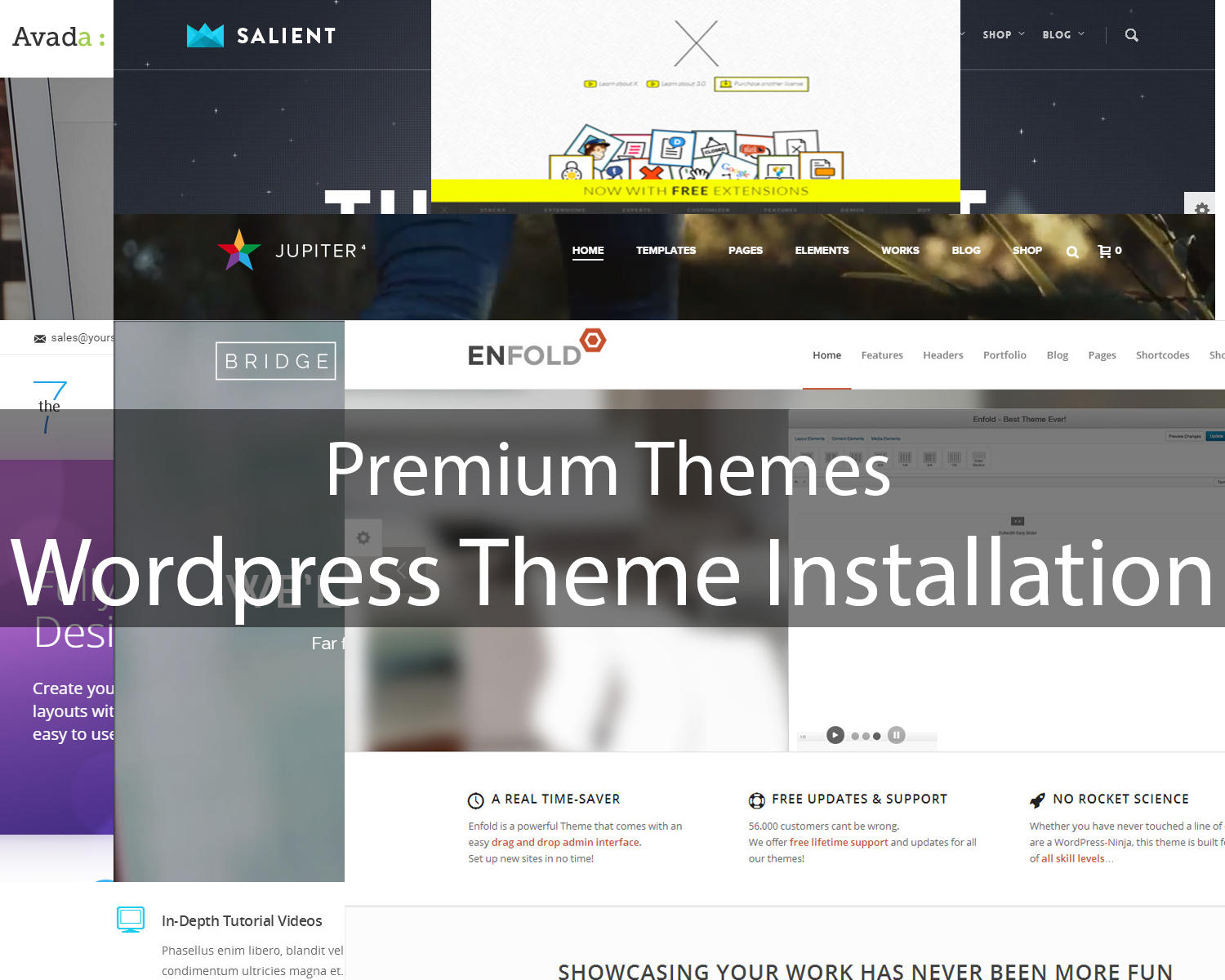 WordPress Theme Installation (All In One package - Demo, Plugin Set-up, Modification) by Moheimen - 75755