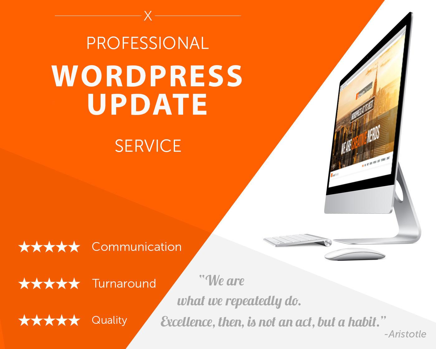 Complete WordPress Update Service with Backup by xstreamthemes - 108901