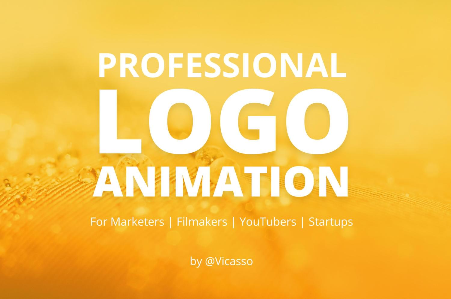 Simple and Professional Logo Animation by Vicasso - 113439